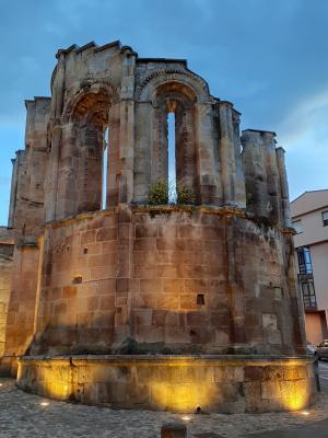SORIA GUIADA: Visita Guiada-Casco antiguo de Soria