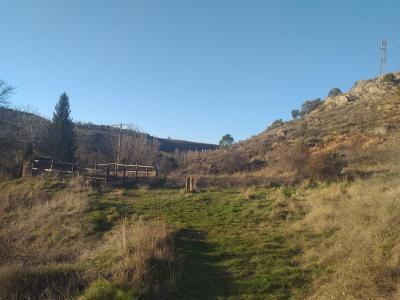 Soriaguiada-II (Nevero medieval del monte de las Ánimas)